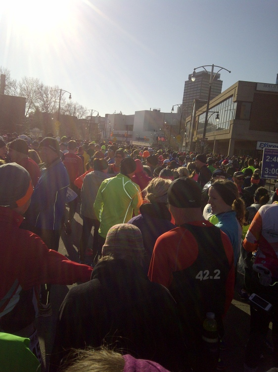 The starting corral of the 121st Around the Bay Road Race
