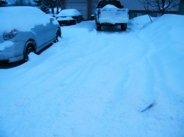 While some fellow bloggers were having tulips and green grass, out snowbanks were getting higher.