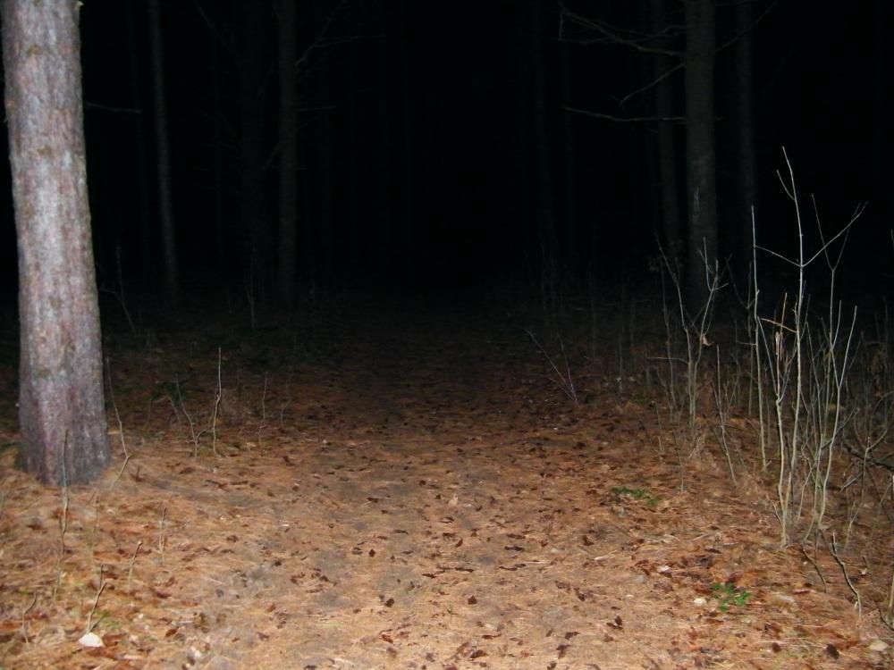 A Community Lights Up a Dark December Night (2/6)