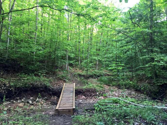 Hills, rocks or even poison ivy...younever knew what was on the other side until you crossed that bridge. Photo credit Twitter feed of The North face Endurance Challenge