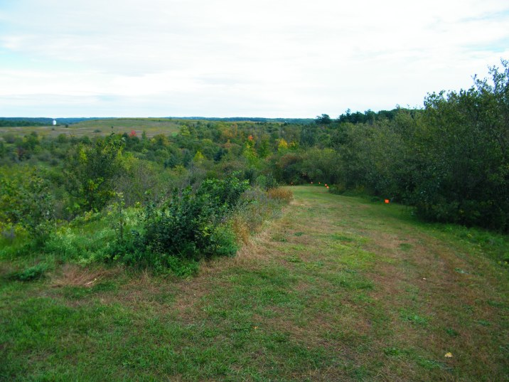 The course drops through the forested valley and comes up on the other side.